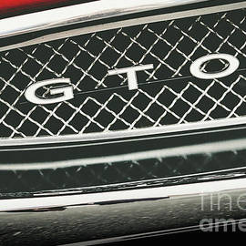 GTO Grill by Colleen Kammerer