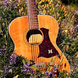 Guitar And Wildflowers by Athena Mckinzie