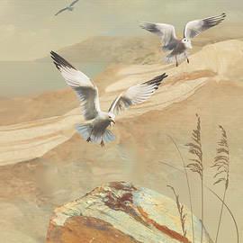 Gulf Coast Gulls  by M Spadecaller