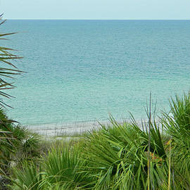 Emmy Vickers - Gulf of Mexico View from Fort De Soto