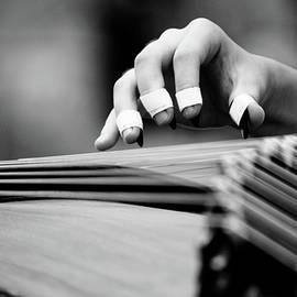 Kim Vetten - Guzheng