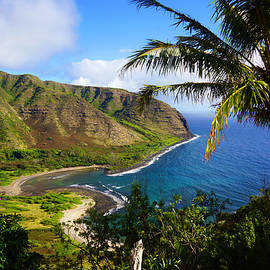 Halawa Valley Beach by Kevin Smith