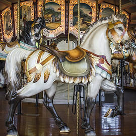 Williams-Cairns Photography LLC - Hampton Carousel
