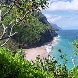 Brian Harig - Hanakapiai Beach