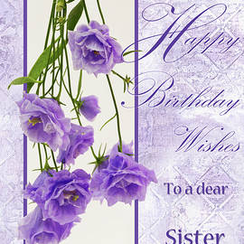 Sandra Foster - Happy Birthday Wishes To A Dear Sister