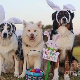 Happy Easter by Kathy Tarochione