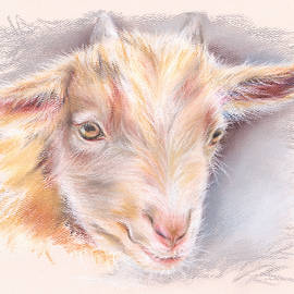 MM Anderson - Happy Little Goat