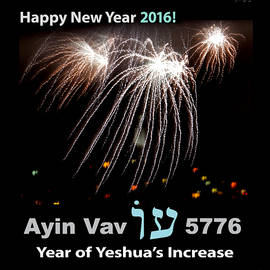 Happy New Year 2016 by Brian Tada