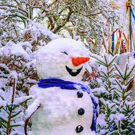 Viktor Birkus - Happy Snowman 6