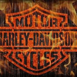 Jean Francois Gil - Harley Davidson Motorcycles 3