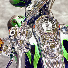 Harley Green Black 033118 by Rospotte Photography