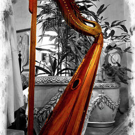 Al Bourassa - Harp At Mansion Alcazar, Cuenca, Ecuador