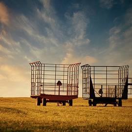 LuAnn Griffin - Harvest Time
