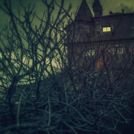 Carlos Caetano - Haunted Mansion