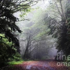 Michelle Williamson - Haunted Road