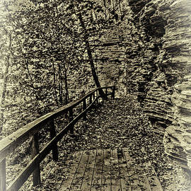Havana Pathway In Sepia by William Norton