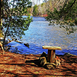 Debbie Oppermann - Have A Rest Enjoy The View