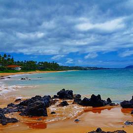 Michael Rucker - Hawaiian Beach Maui