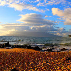 Michael Rucker - Hawaiian Beach of Maui