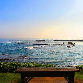 Michael Rucker - Hawaiian Bench