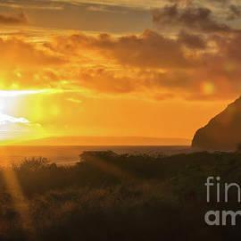 Mitch Shindelbower - Hawaiian Sun Kissed Morning