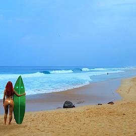 Michael Rucker - Hawaiian Surfer Girl