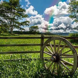 Hawaiian Wagon Wheel by Harry Spitz