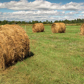 Alan Brown - Hay Bale Harvest