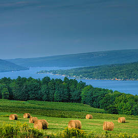 Hayfield And Lake I  by Steven Ainsworth
