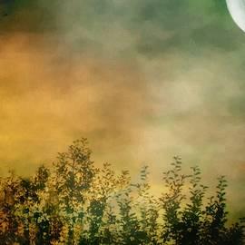 RC deWinter - Haze on Moonlit Meadow
