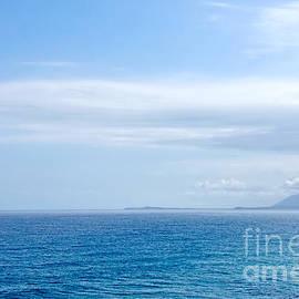 Hazy Ocean View by Kaye Menner