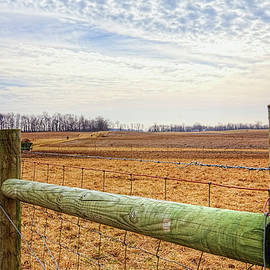 William Sturgell - Cattle Ranch Landscape