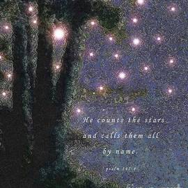 Hazel Holland - He Counts the Stars