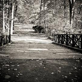 Colleen Kammerer - Headless Horseman Bridge - Sleepy Hollow