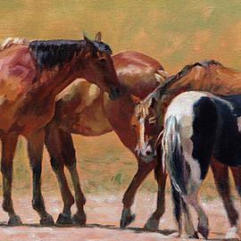 Heads or Tails by Bonnie Mason