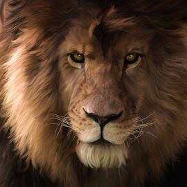 Jordan Blackstone - Heart Of A Lion - Wildlife Art