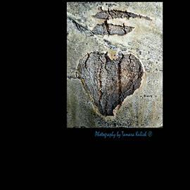Tamara Kulish - Heart written in the trees 1