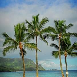 Lynn Bauer - Heaven in Hawaii