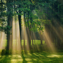 Christina Rollo - Heavenly Light Sunrise