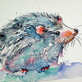Hedgehog - Kovacs Anna Brigitta