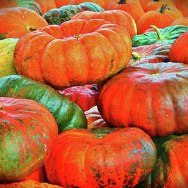 Cynthia Guinn - Heirloom Pumpkins