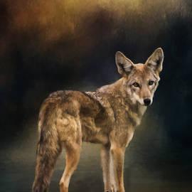 Jordan Blackstone - Hello Goodbye - Wildlife Art