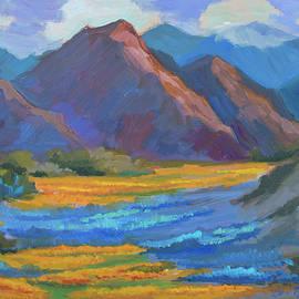 Diane McClary - Henderson Canyon Borrego Springs