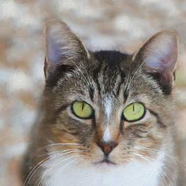 Ericamaxine Price - Henry the Cat - Painting