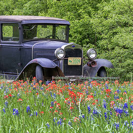 Henry The Vintage Model T Ford Automobile by Robert Bellomy