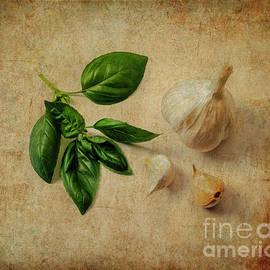 Herbs #055 by Hans Janssen