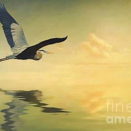 Heron Heading Home by Priscilla Burgers