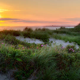 Herring Cove Beach by Bill Wakeley