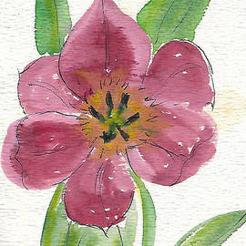 Hibiscus - A Watercolor by Eleanor Robinson