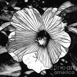 Luther Fine Art - Hibiscus in Black and White
